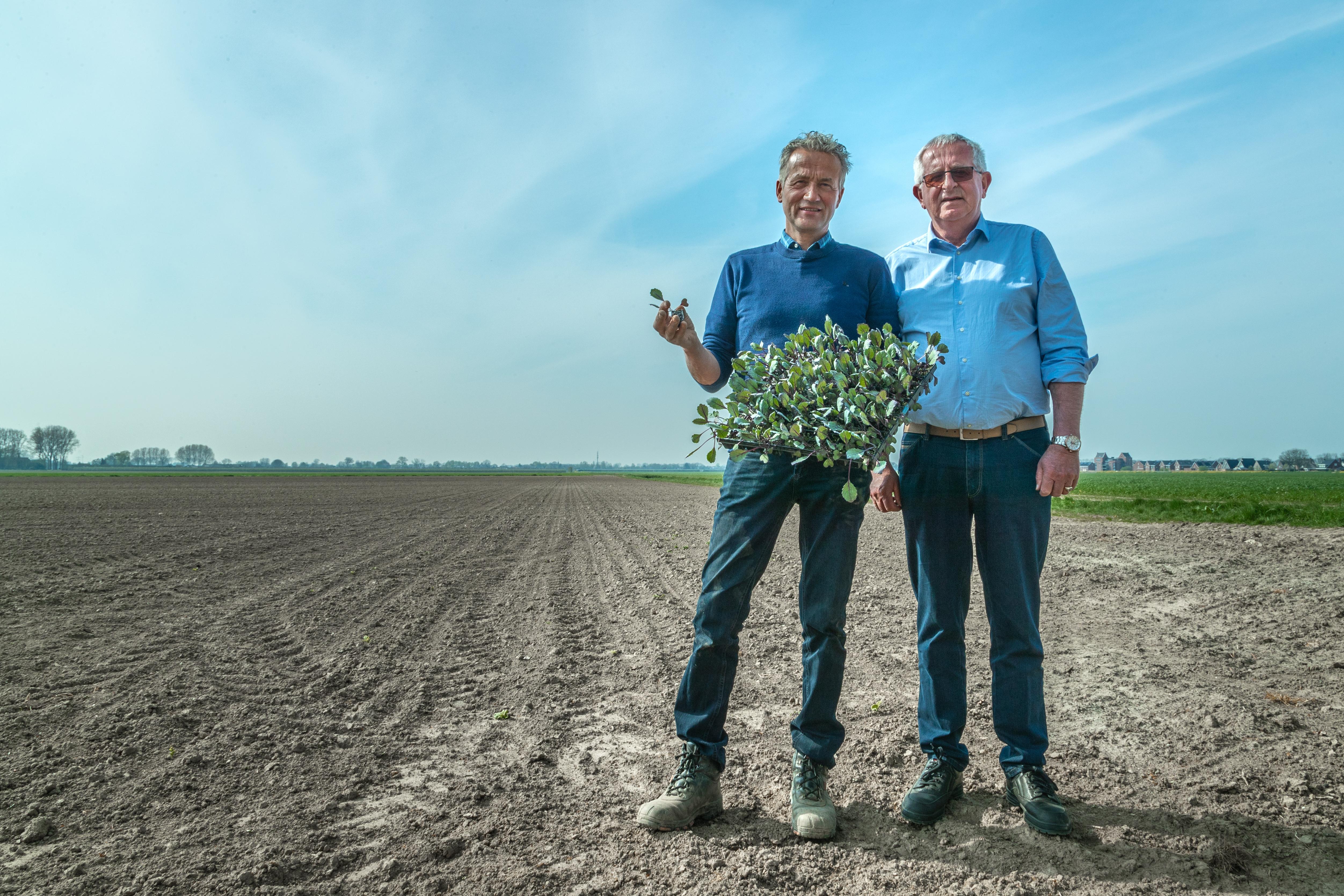 Wim Straver & Adri den Dekker