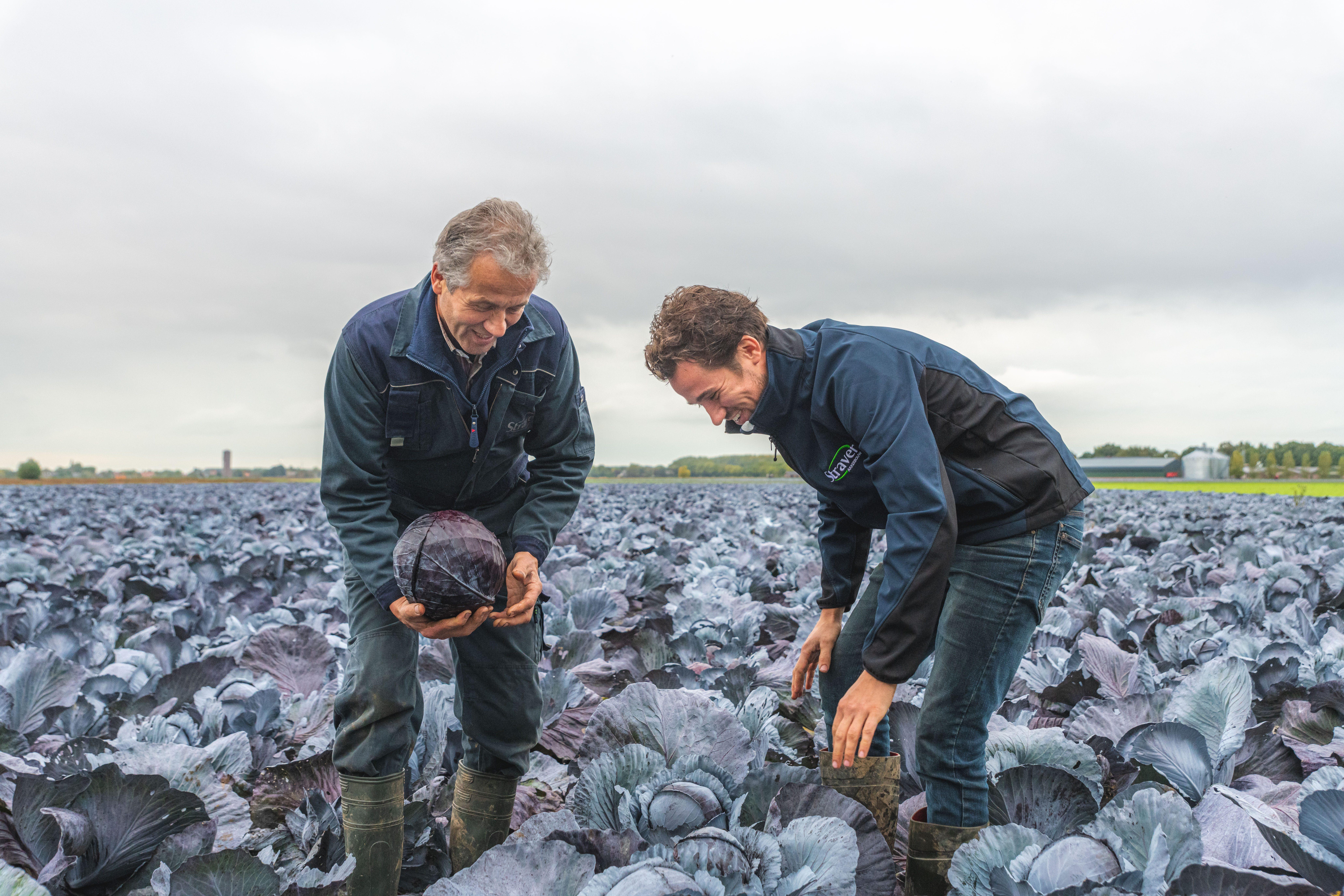 Wim & Johannes Straver op het land
