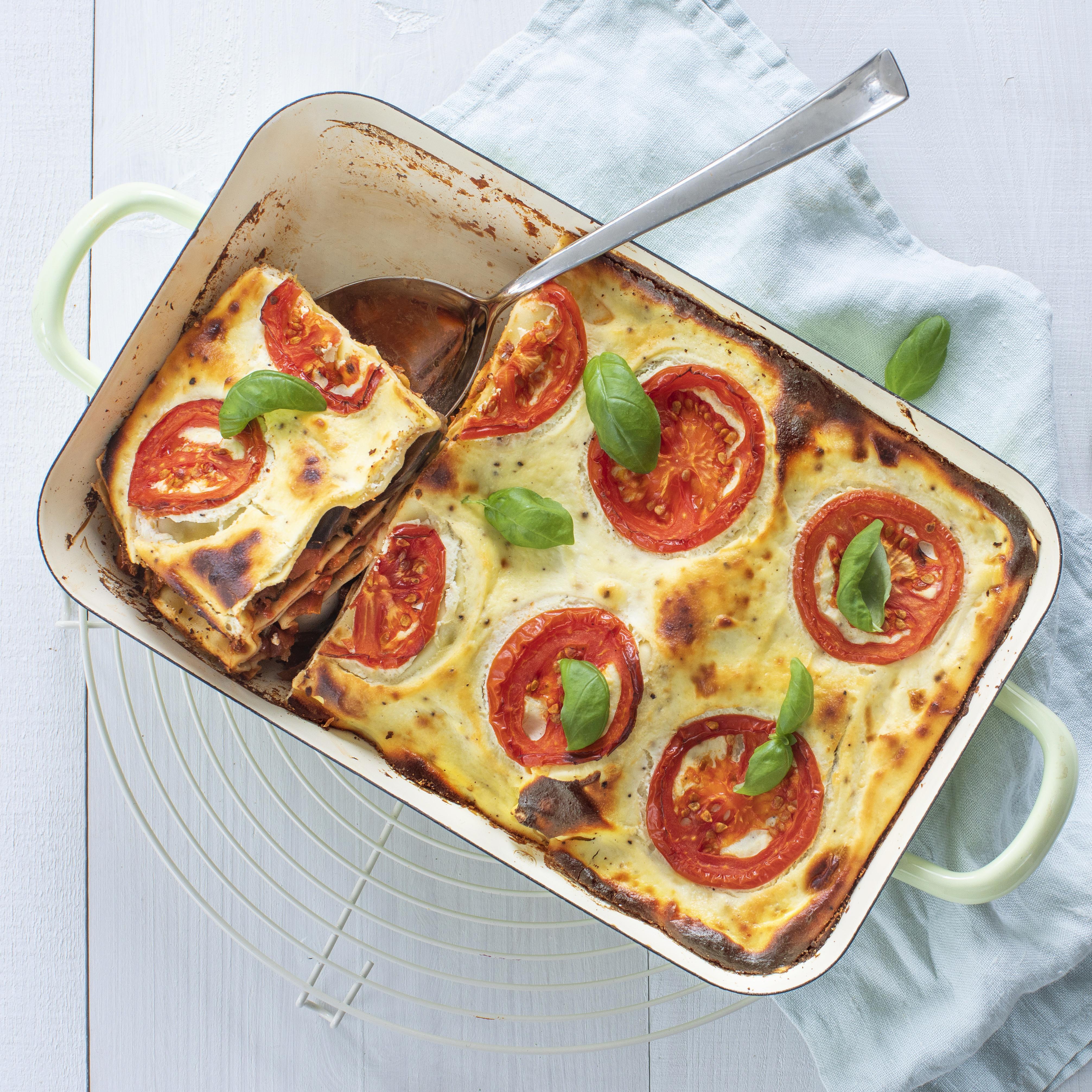 Hak1 Lasagne V